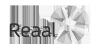 Reaal1-100x50-gray
